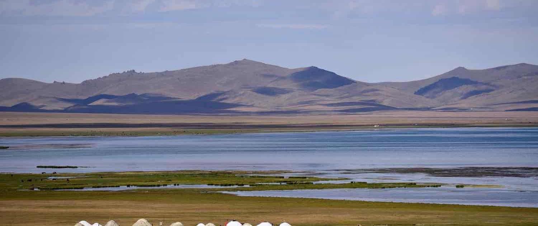 Song Kol den og jurter i Kirgisistan