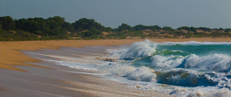 Strand på rejser til Sri Lanka