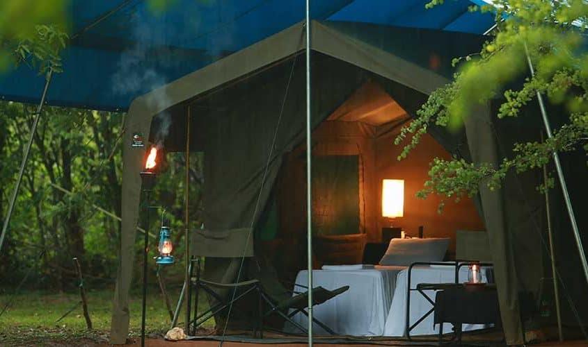Lodge I naturen