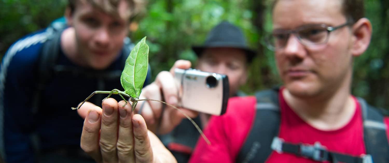 Asser Øllgaard med græshoppe