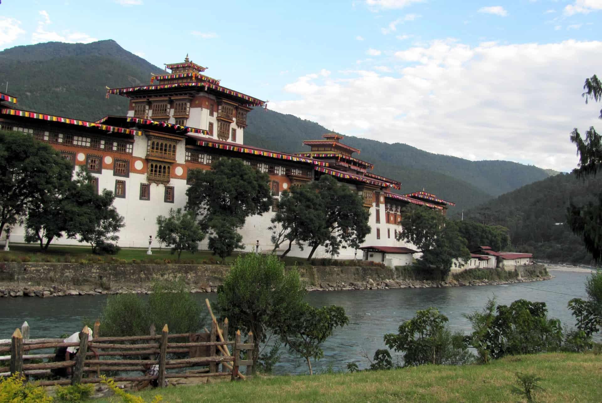 Punakha dzong på rejser til Bhutan