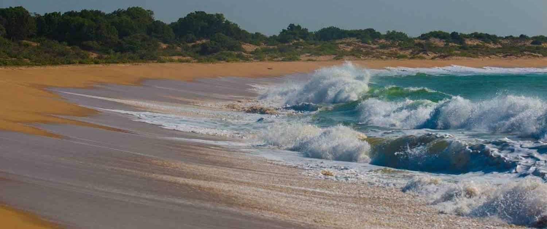 Strand på Sri Lanka
