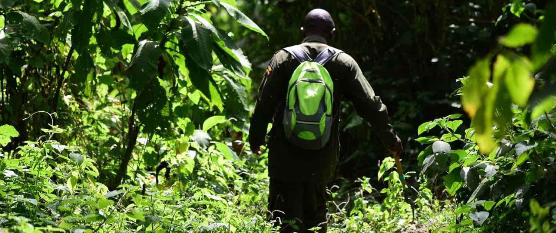 På vandring i Uganda