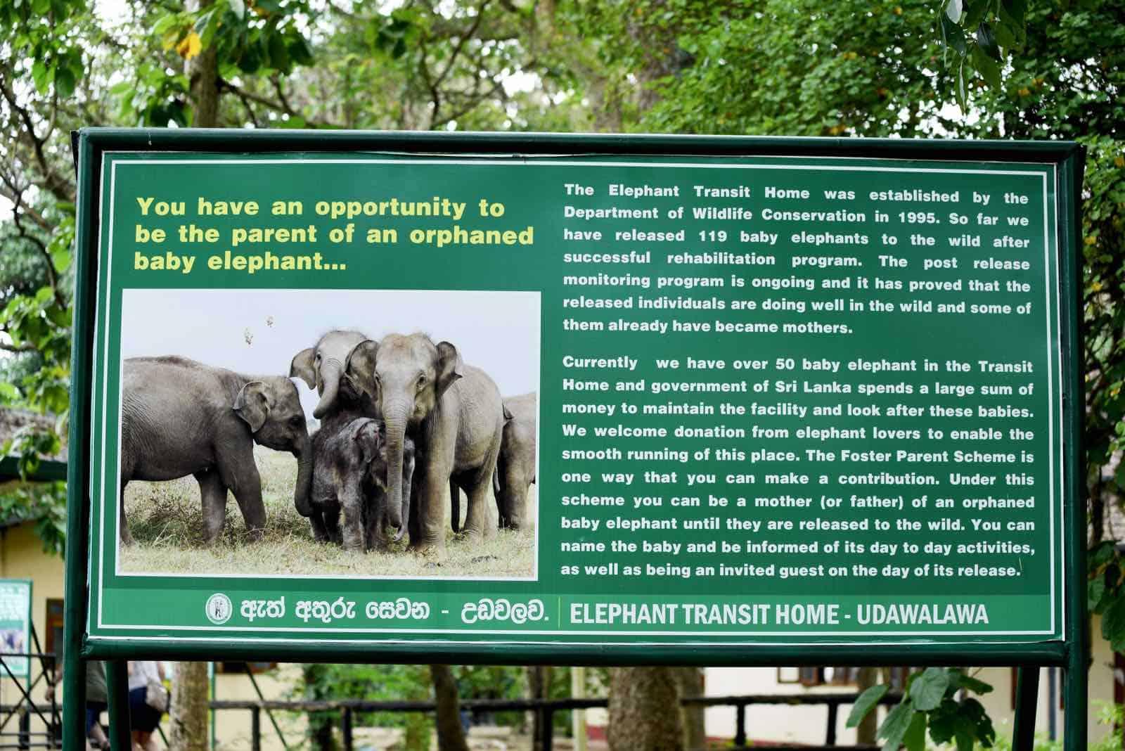 elephant transit home udawalawe