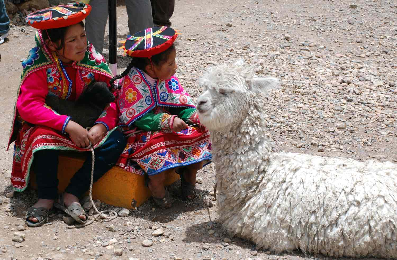 Unge peruvianske piger og hvis alpaka