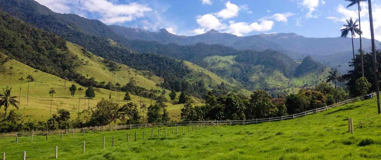 Salentodalen på rejser til Colombia