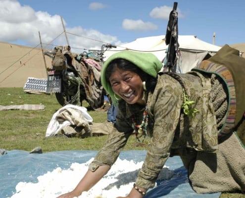 Tibetansk kvinde fører ost i Tibet
