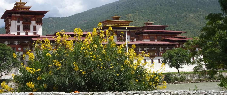 Bygningsværk på rejser til Bhutan