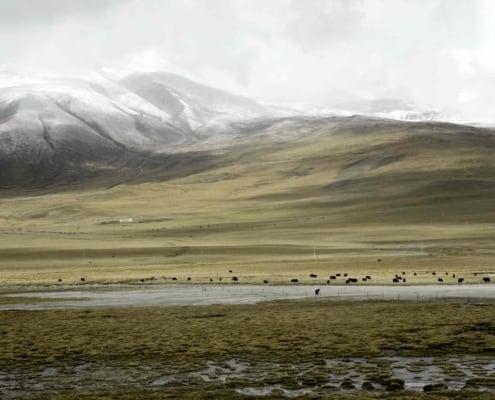 Plateau i Tibet