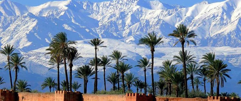 Ørkenbyen Marrakech med bjerge i baggrunden
