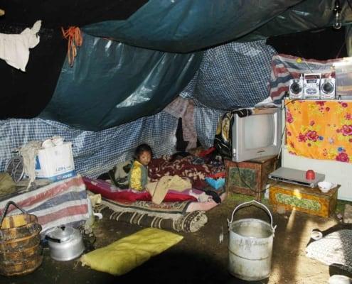 Nomadedreng i telt på rejser til Tibet
