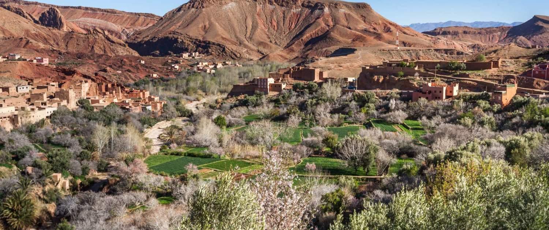 Daddeldalen i Marokko