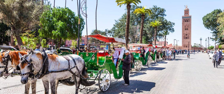Optog i gaderne i Marrakech