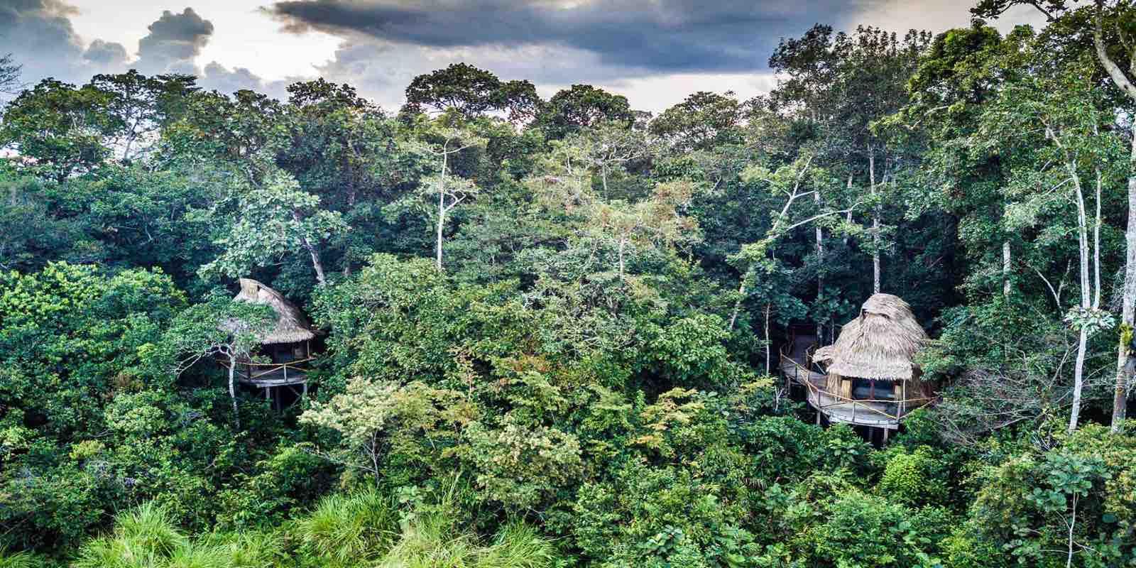 Odzala Discovery Camp set ovenfra - Congos jungle