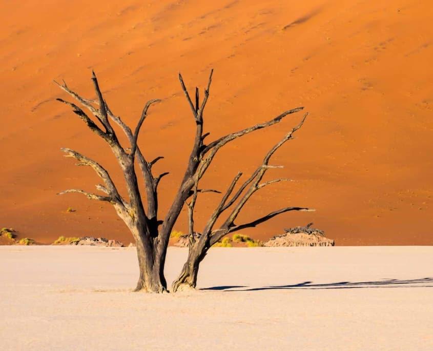 Namibiaørkenen