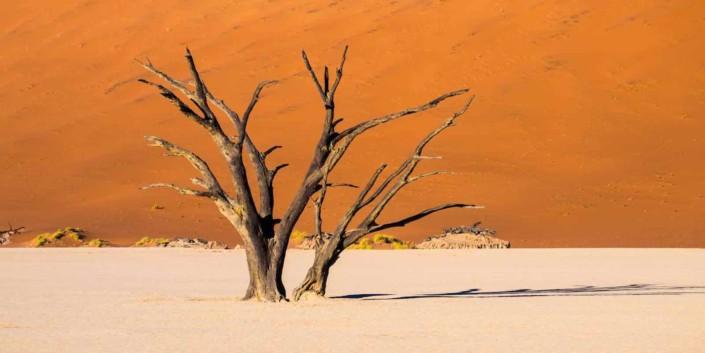 Namibørkenen