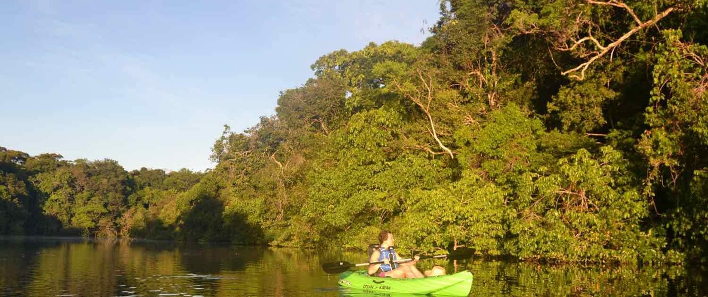 amok natur ad Amazonfloden
