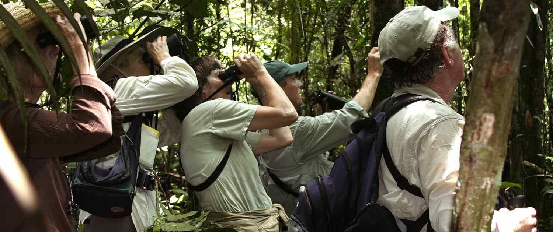 Ekspedition i Amazonas regnskov