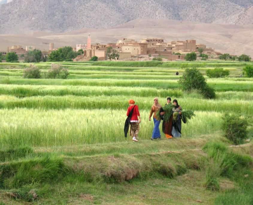 Natur og arbejde i Marokko Alemdoun landsby