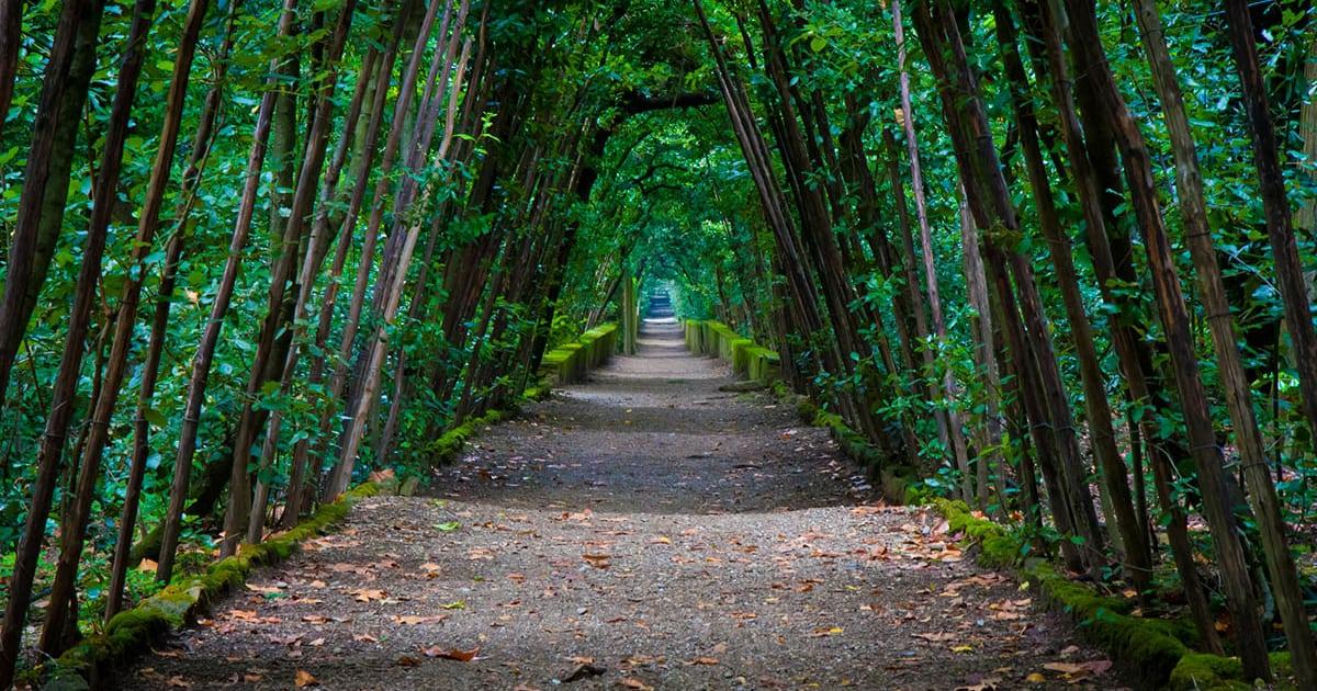 Italien - Firenze - Boboli-haverne