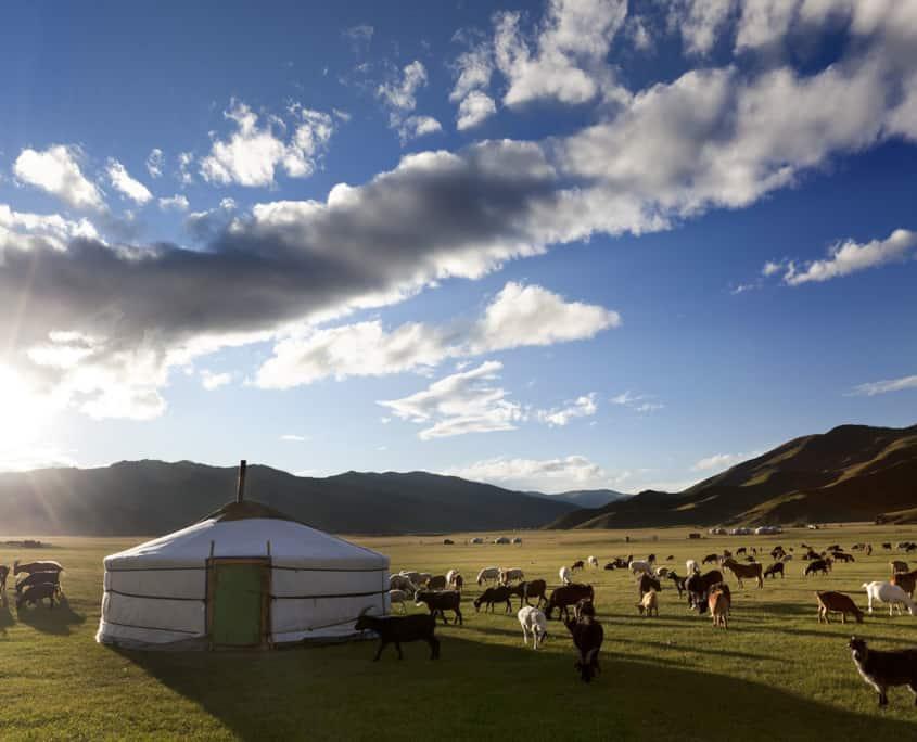 jurt eller ger på rejser til Mongoliet