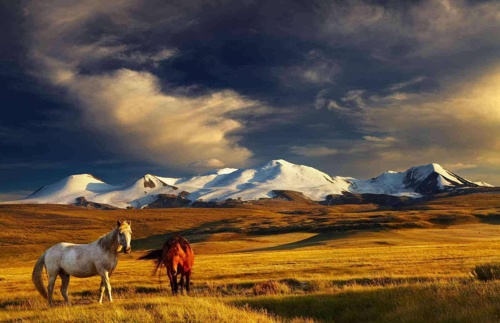 smukke landskaber i Mongoliet