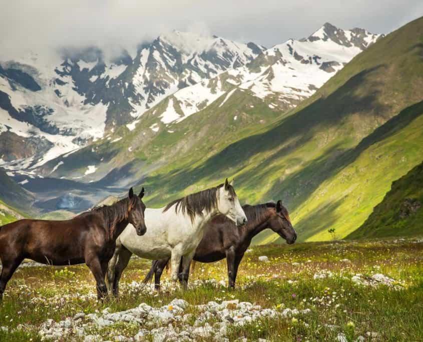 Rejser til Sydossetien
