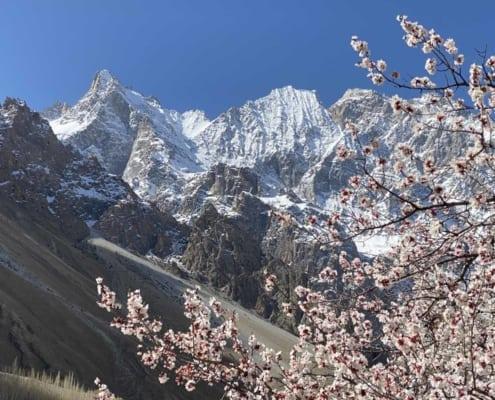 Eksotisk rejse til Pakistan