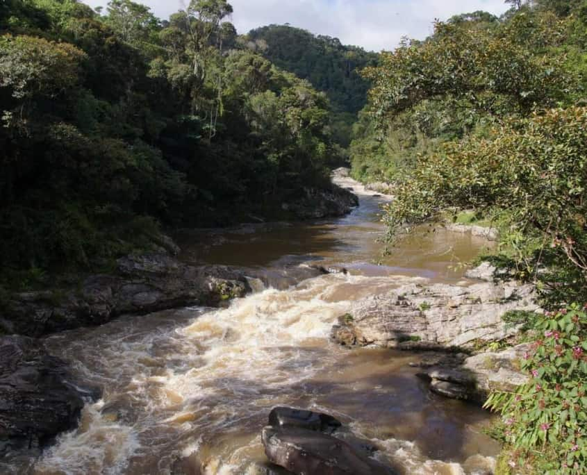 Nationalparker i Madagaskar